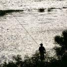 鮎友釣りの竿について